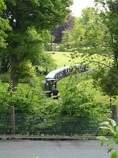 mini train Marwell Zoo