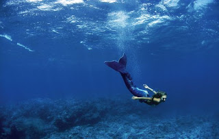 Pictures of Real Mermaids http://hiddenworld-annie.blogspot.com/2011/02/mysterious-mermaids.html