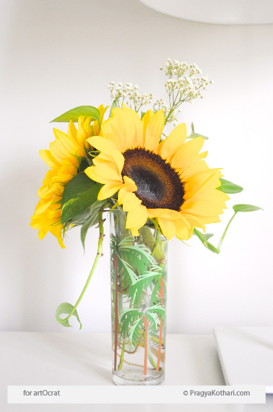 Sunflower arrangement on Pragya Kothari desk