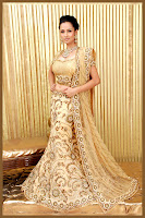 indian bridal lehenga choli designs ,Hot Saree Stills, indian brial dress, lehenga choli designs, lehenga designs, salwar suit,