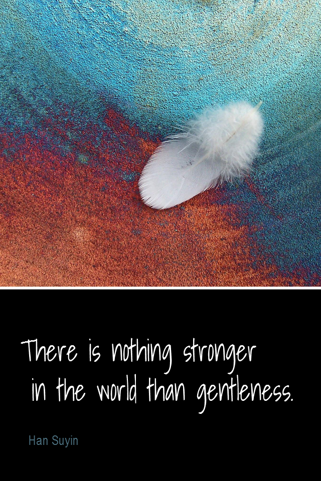 visual quote - image quotation for COMPASSION - There is nothing stronger in the world than gentleness. - Han Suyin