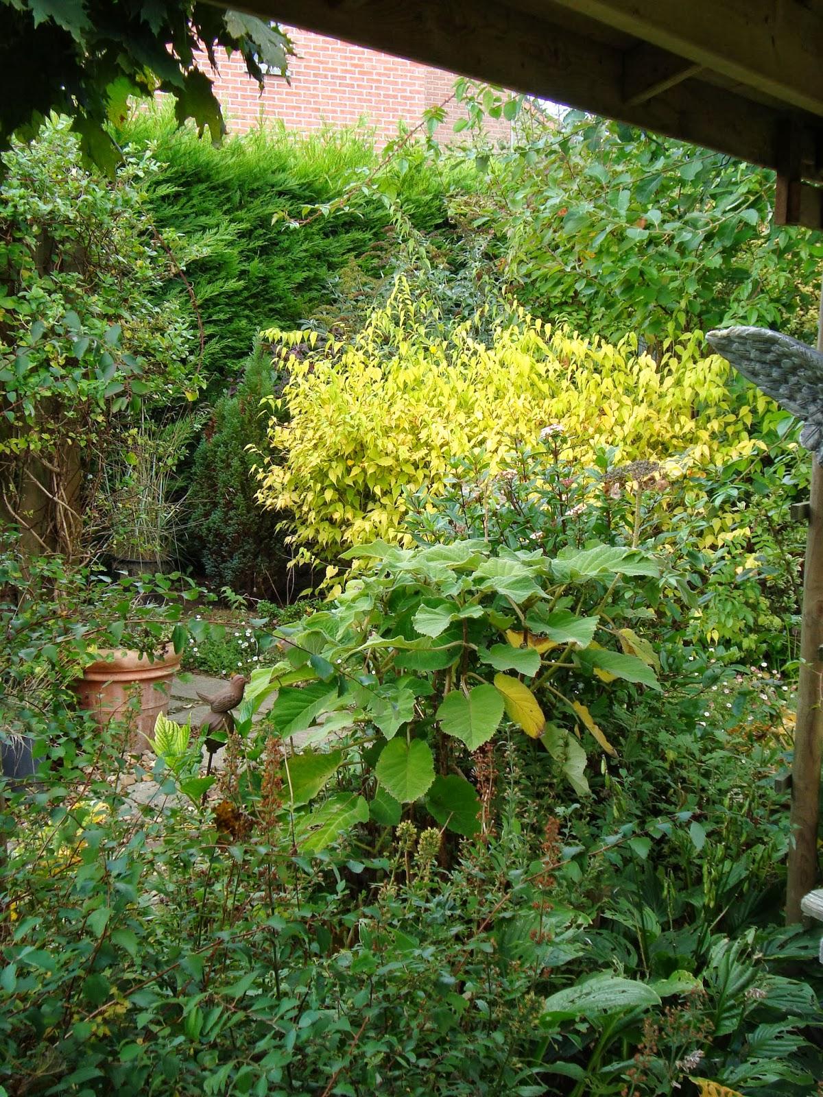 Passionn ment jardin petit tour au jardin - Petit jardin culinary arts tours ...