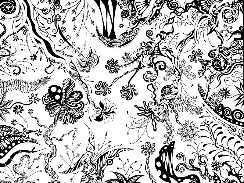 Série - Jungles noires Jungle