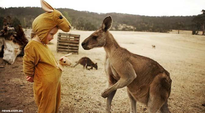 Imut dan Lucu Gadis Cilik bersama Kanguru ini Memukau Dunia | WoowUnic