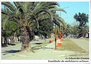 Avenida Eduardo Dumas