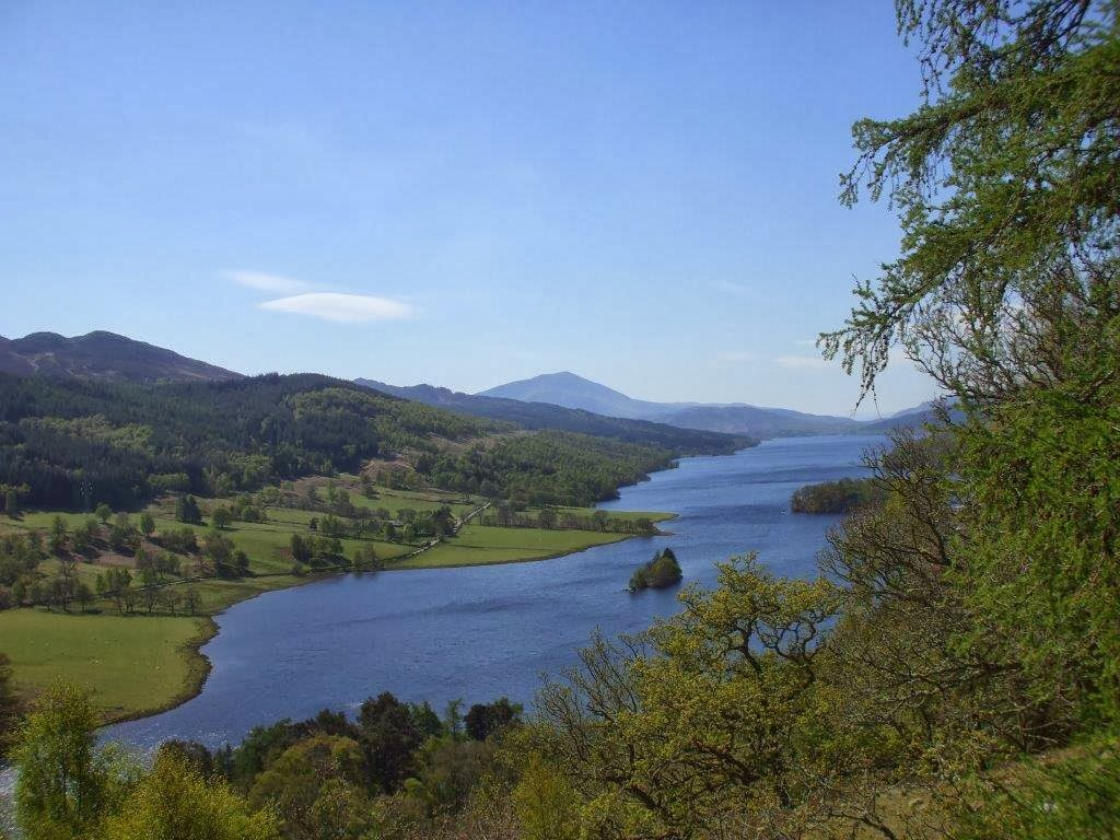 The Queen's View,  Loch Tummel Sea penguin