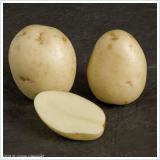 swift new potatoes