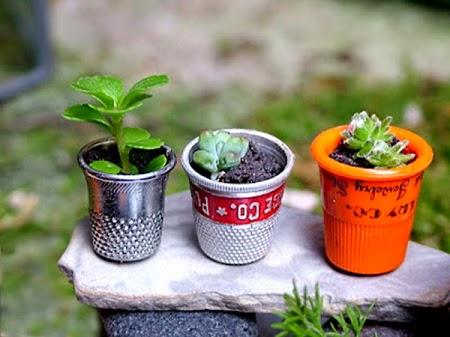 5 Maneras de Cultivar Plantas Reciclando Recipientes