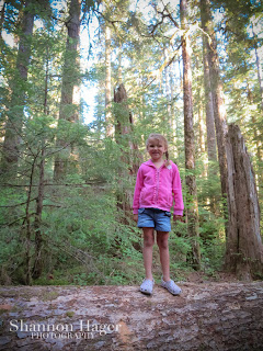 Shannon Hager Photography, Forest Portraits, Hiking