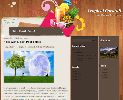 Tropical Cocktail Blogger Theme