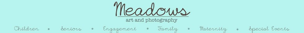 Meadows Art and Photography