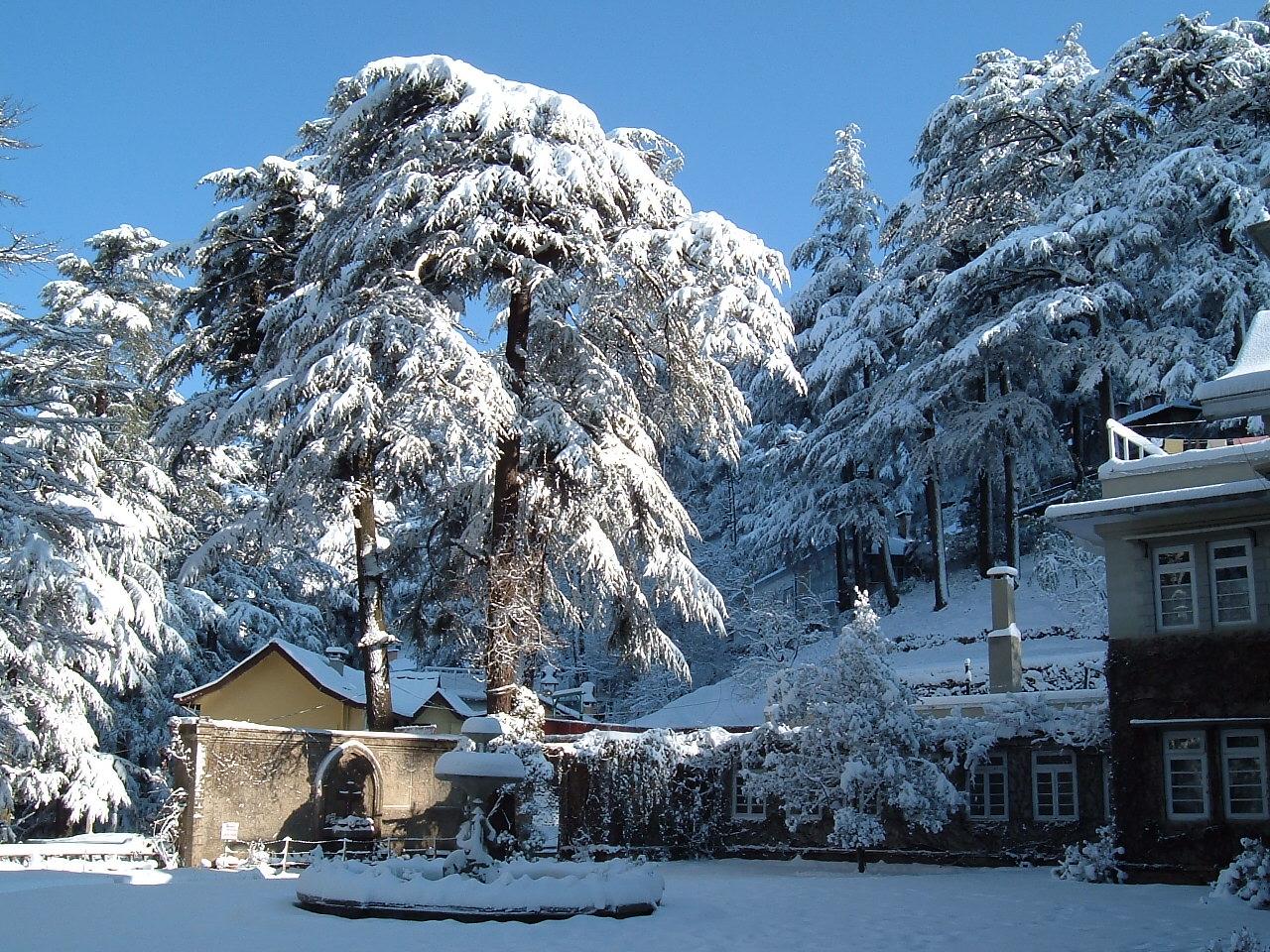 http://1.bp.blogspot.com/-I7RpWfIERyQ/TbEiVvqw3PI/AAAAAAAAAc0/YSz-U_5HXm8/s1600/Shimla-Resorts.jpg