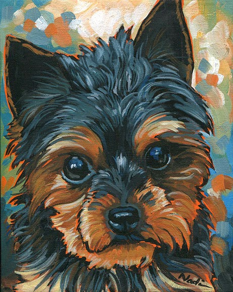dog painting, Yorkshire Terrier