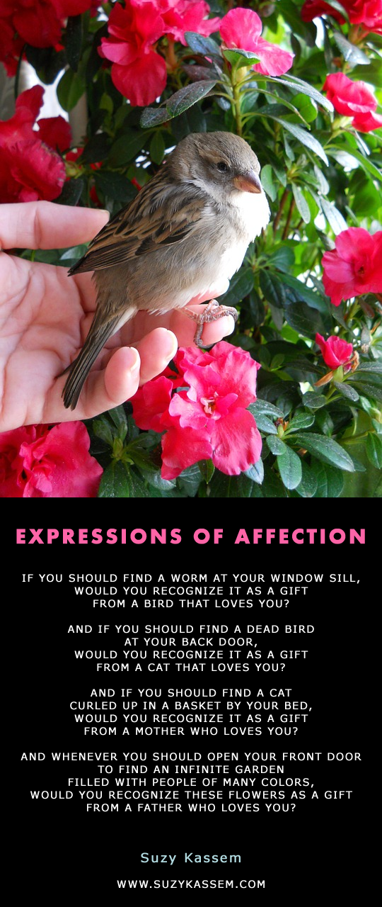 Expressions of Affection by Suzy Kassem Poetry