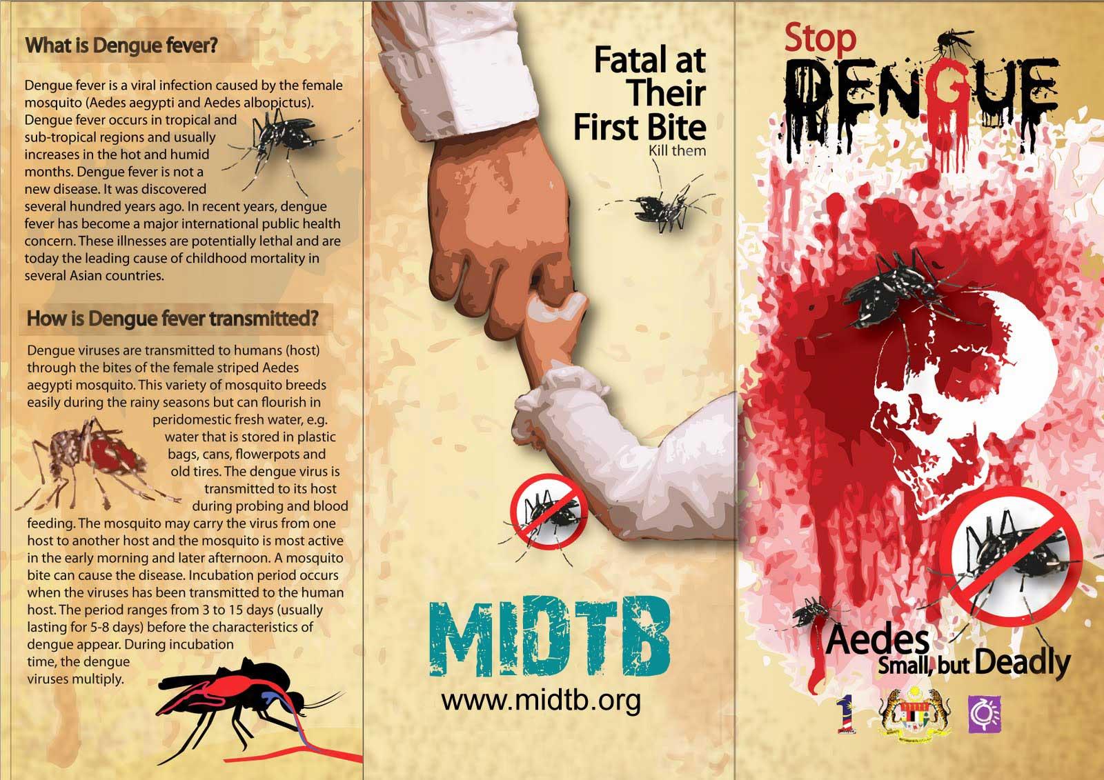 Dengue fever Prevention – tips, symptoms and treatment