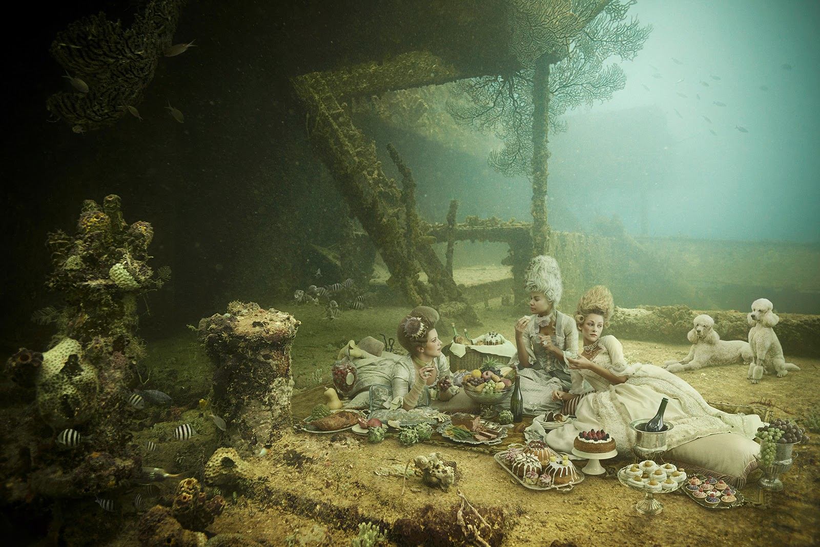 11-Andreas-Franke-Surreal-Artificial-Reef-Photography-www-designstack-co