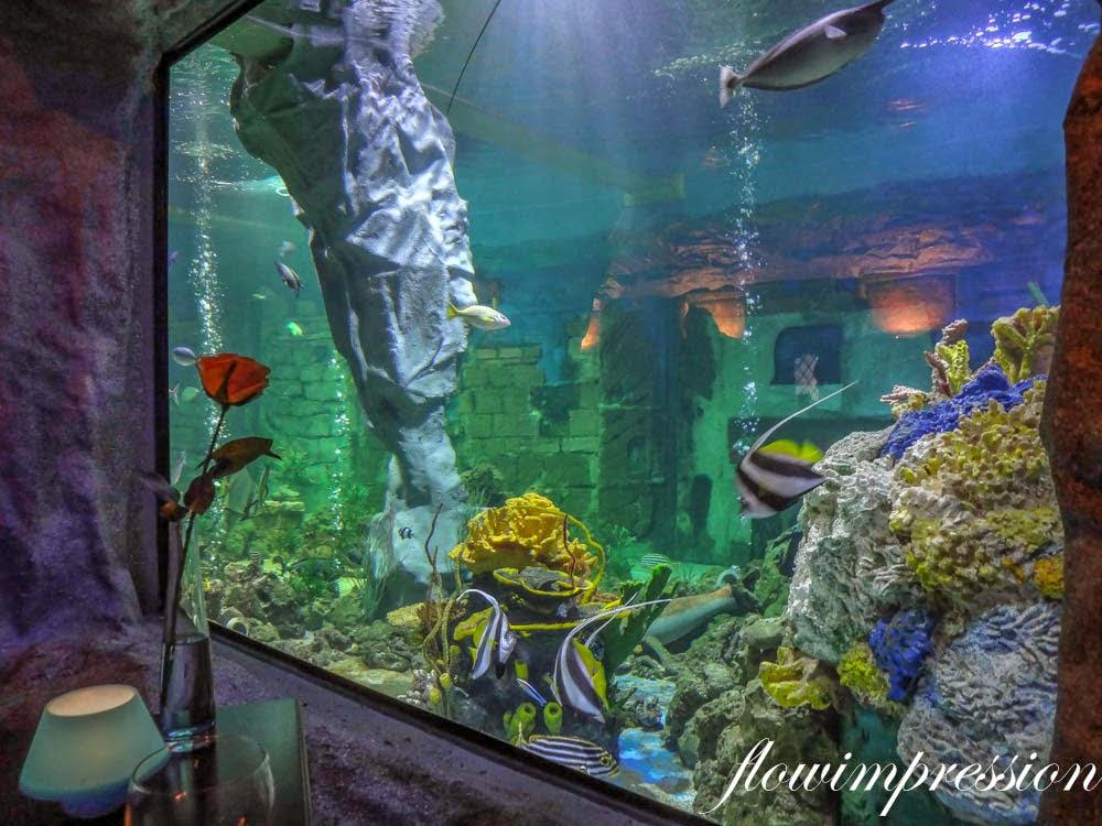 Unterwasser Dinner
