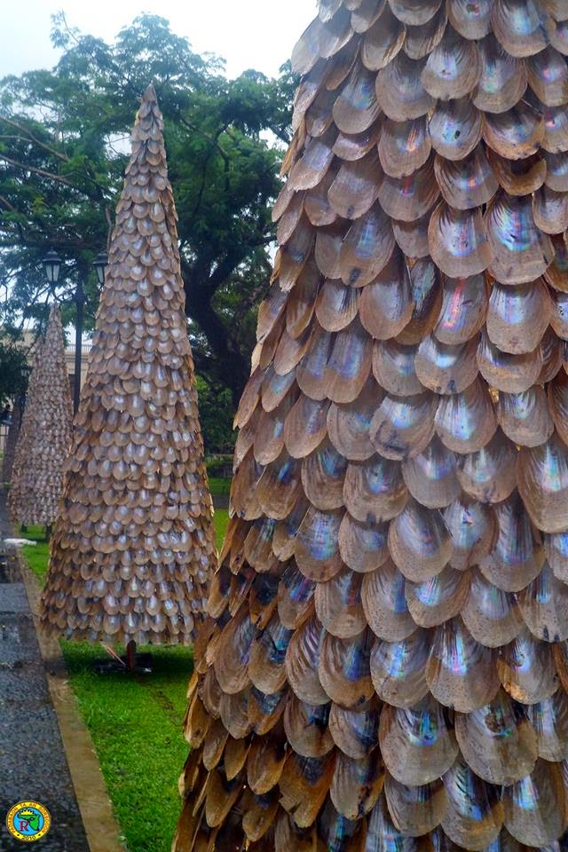 Baluko shell Christmas Trees in Sorsogon 2014