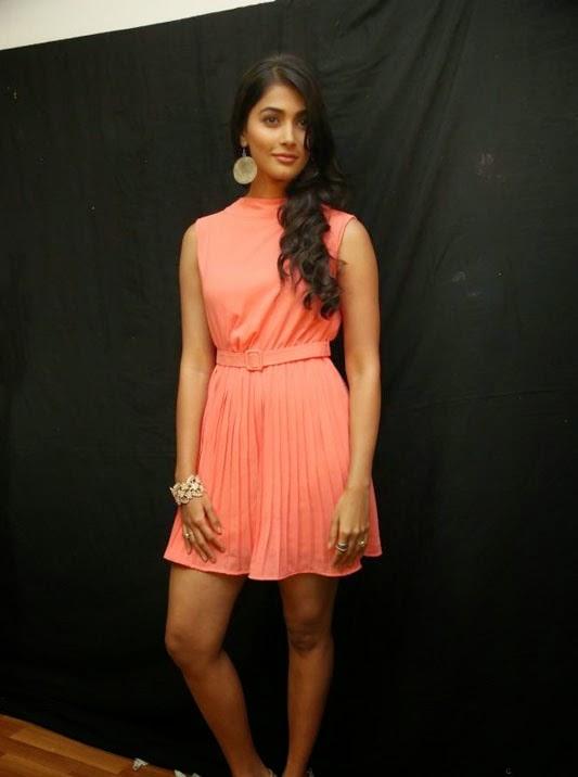 Pooja Hedge at Oka Laila Kosam Pre Release Press Meet Photos