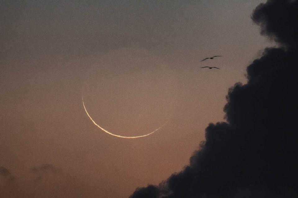 Un espacio para el alma luna nueva en escorpio for En que fase de luna estamos hoy