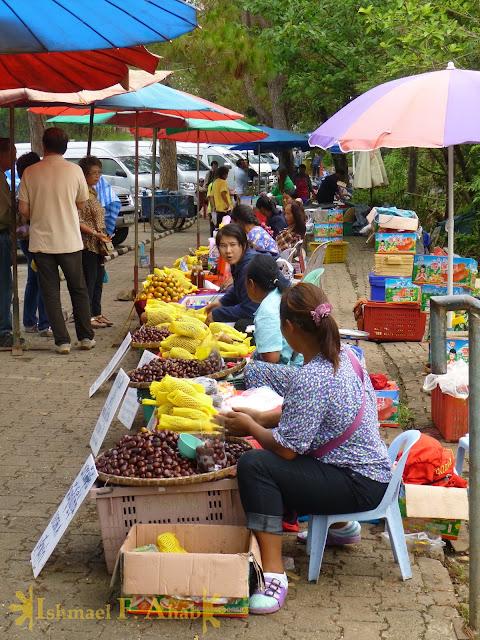 Street vendors along the road to Doi Tung Royal Villa