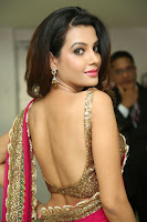 Deeksha Panth Sexy Pic in Pink Half-Saree
