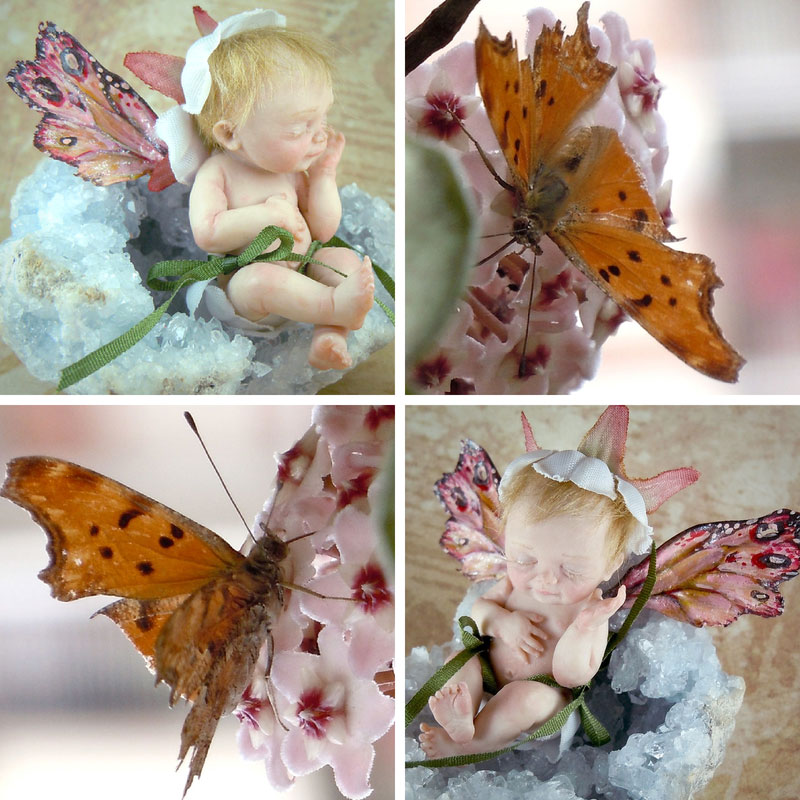 Fairy ooak and real butterfly