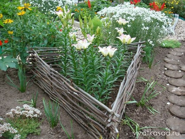 My space...: Nice garden ideas...