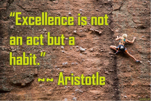 Aristotle, excellence, habit, philosophy, life