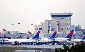 Delta Airlines Loses More Dogs