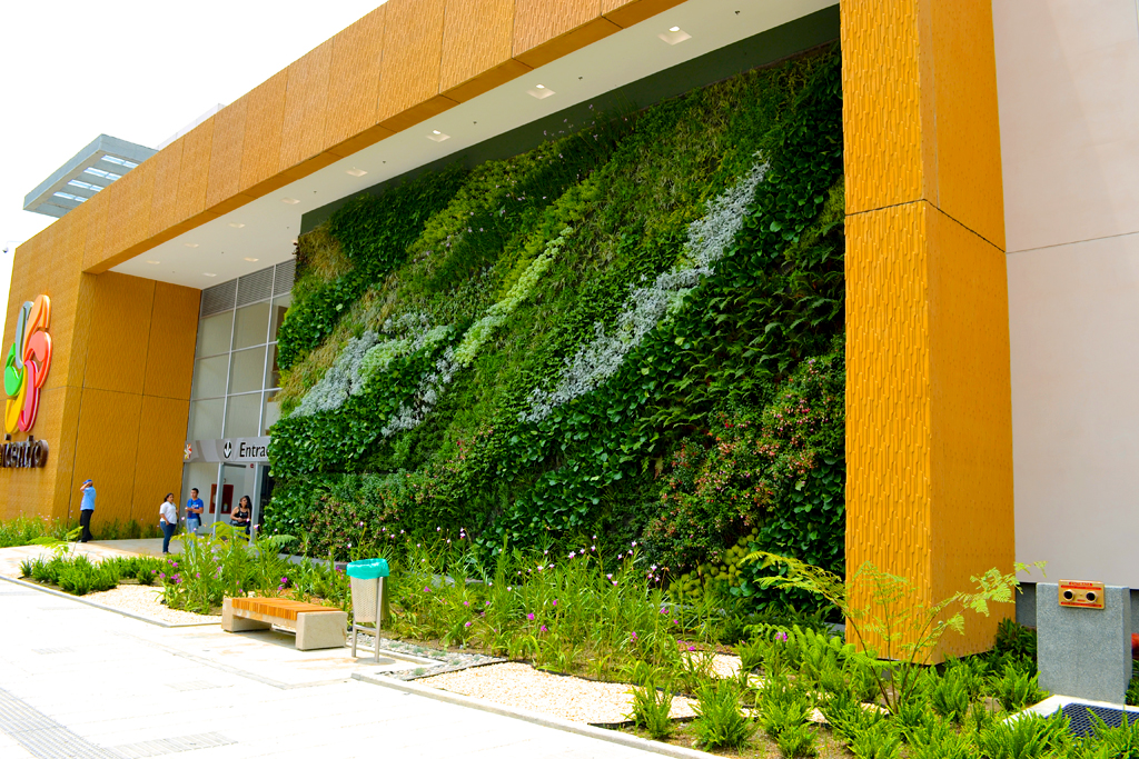 Paisajismo urbano jardin vertical del centro comercial de armenia en colombia jardines - Jardines verticales plantas ...