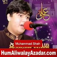 http://72jafry.blogspot.com/2014/05/syed-muhammad-manqabat-2014.html