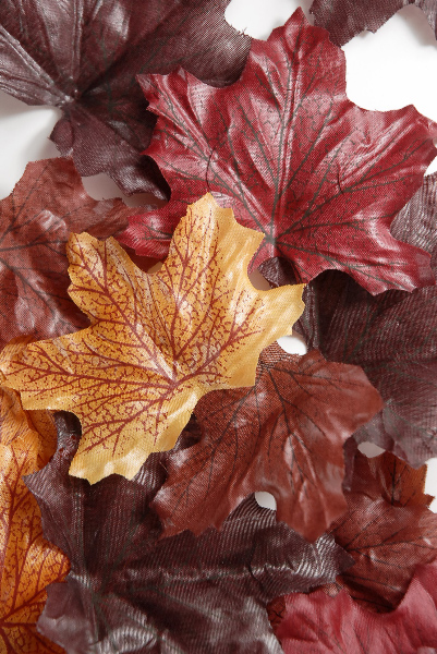 Silk Autumn Leaves5