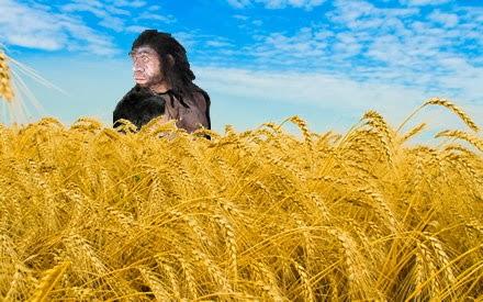 cereal neandertal?