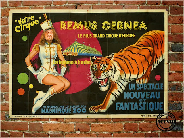 Poster funny Circul Remus Cernea