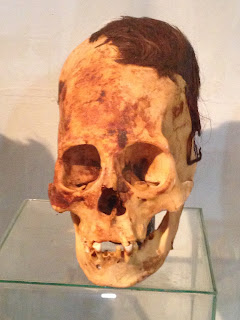 This is Mike...Ever had one of those hmmm moments? Both Elise and I had that experience while at a small museum known for their elongated skulls in Paracas, Peru. The skulls had human-like characteristics but are strangely different. The thickness of t...