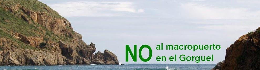 NO al macropuerto en El Gorguel