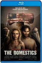 The Domestics (2018) WEB-DL 720p Subtitulados