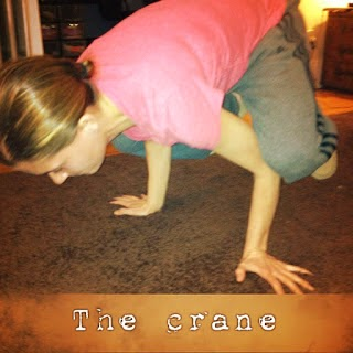 the crane, p90x, p90x transformation, beachbody coach