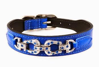 Important Information Regarding Diamante Dog Collars