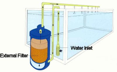 Fish tank filter how to install fish tanks aquarium Types of aquarium filters