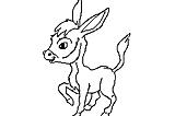 Burrinho