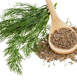 Những loại thuốc từ thiên nhiên chữa bệnh trào ngược dạ dày