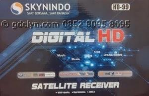 Receiver Parabola,Jual receiver,Skynindo HD99