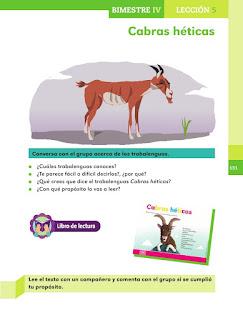 Apoyo Primaria Español 1er grado Bimestre 4 lección 5 Cabras héticas