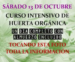 SÁBADO 13 DE OCTUBRE CURSO INTENSIVO DE HUERTA ORGÁNICA EN MORÓN A 5 CUADRAS DE ACCESO OESTE