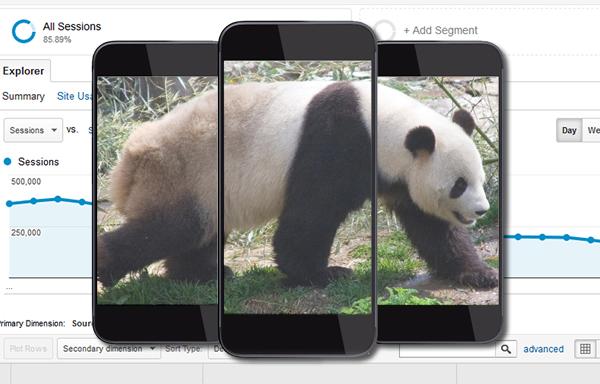 mobile seo expert