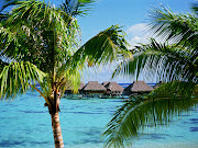 . me when I say that Moorea Island is the perfect honeymoon destination. (moorea island honeymoon)