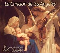 El 20 de diciembre de 2011 en la iglesia de la Anunciación de Sevilla a beneficio de la Fundación Prodean