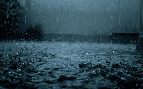 Movimento Chuva Serôdia Significado